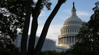 Democrats call for end of shutdown