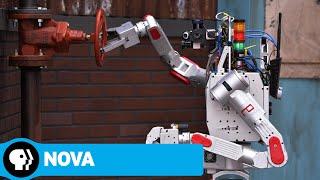 NOVA   Rise of the Robots   PBS