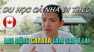 🇨🇦Định cư Canada #1: Du học Canada cả nhà đi theo 📚Xuất khẩu lao động Canada | Quang Lê TV #107