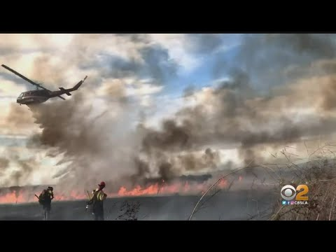 Firefighters Make Quick Work Of Fossil Fire In Irvine