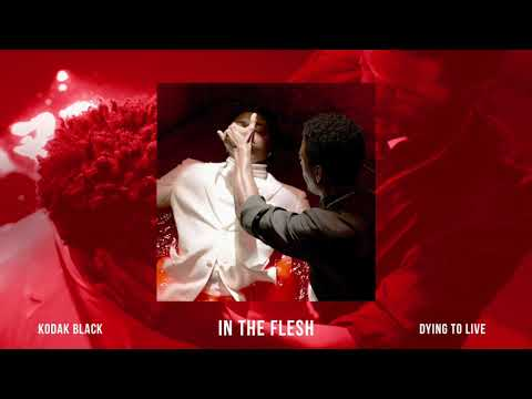 Kodak Black - In The Flesh [Official Audio]