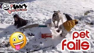 Funniest Animal Fails | Funny PET Videos #1