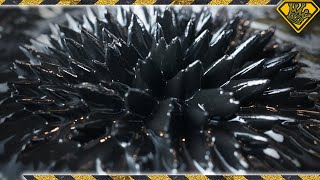 DIY Magnetic Fluid (Ferrofluid)