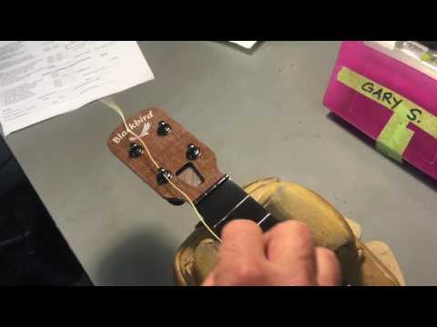 Ukulele stringing by Blackbird