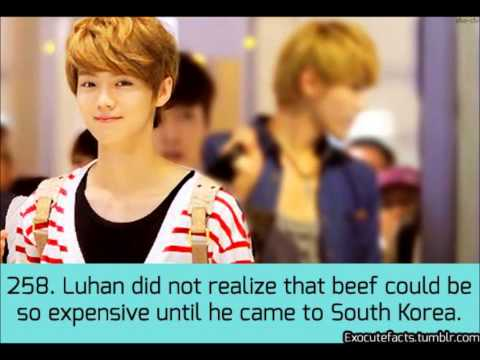 EXO-Luhan Facts from Tumblr