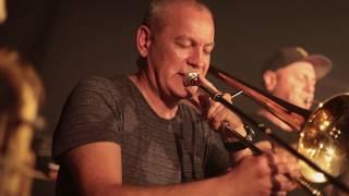 Salmonella Dub Soundsystem - Nelson Live