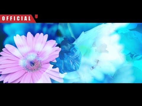 vivid undress「オリジナルカラー(ORIGINAL COLOR)」MV