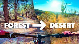 FROM FOREST TO DESERT! | Riding Mt. Lemmon in Tucson, Arizona!