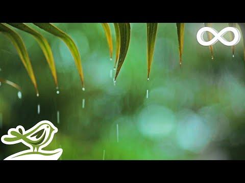 Relaxing Music & Rain Sounds - Beautiful Piano Music, Background Music, Sleep Music