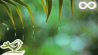 relaxing-music-rain-sounds-beautiful-piano-music-background-music-sleep-music-%e2%80%a2-you-me.jpg