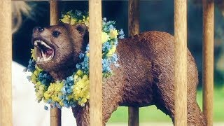 "MIDSOMMAR  ""Bear in a Cage Official Trailer"" (2019) HD"