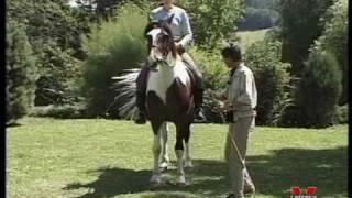 Equitación gimnástica