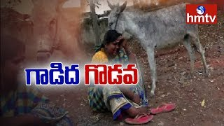 Police Filed A Case Over Missing Of Donkey..