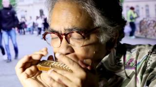 Hotel California - Shombit harmonica