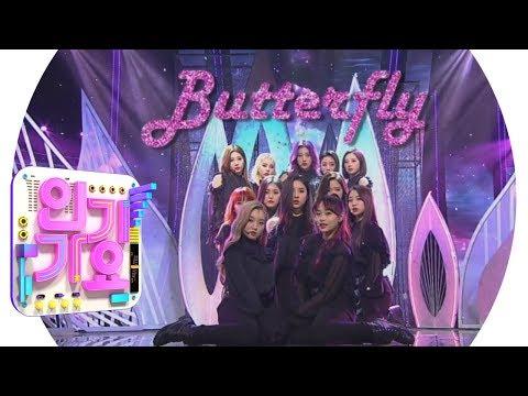 LOONA(이달의 소녀) - Butterfly  @인기가요 Inkigayo 20190224