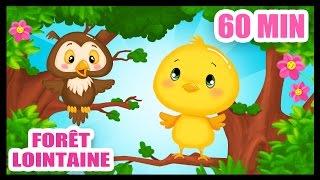 Dans la forêt lointaine - 60 min de comptines pour bébés - Titounis