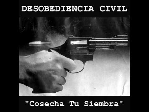 Desobediencia Civil - Sin Amor