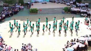 [Flashmob] 11A05 - THPT Phú Nhuận (2015 - 2016)
