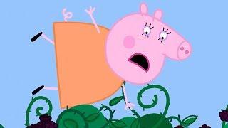 Peppa Pig Français | Le mûrier | 40 Minutes ⭐️ Compilation 2019 ⭐️ Dessin Animé