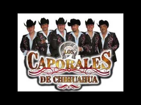 Los Caporales De Chihuahua El Manicero Y General Quevedo