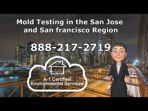 Mold Testing Mountain View