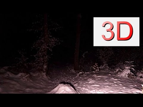 4K 3D Video, Winter Forest Night Flight with Snow and Ice