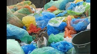 The world is 'drowning' in trash. But can refuse be a resource?