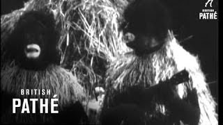 Max And Harry Nesbitt (1935)