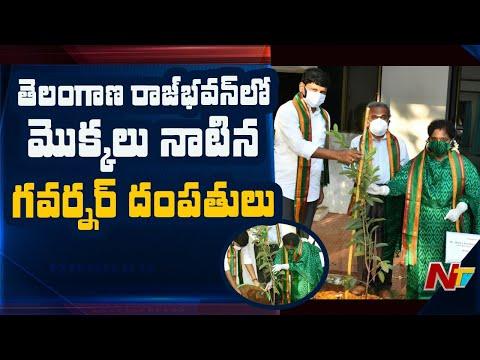 Governor Tamilisai Soundararajan participates in Green India Challenge