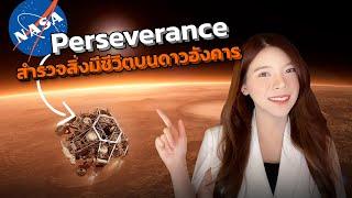 ภารกิจ NASA Perseverance ตามหาร่องรอยสิ่งมีชีวิตบนดาวอังคาร   LDA World
