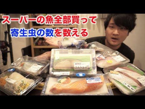 スーパーの魚買い占めて寄生虫数えたら予想外のところから寄生虫が・・・