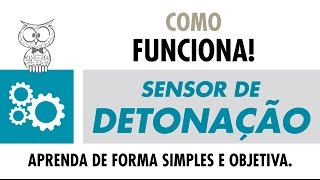 https://www.mte-thomson.com.br/dicas/como-funciona-sensor-de-detonacao