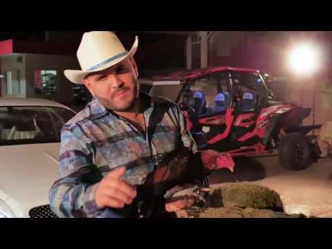 Alfredo Ríos El Komander - El Gallero ( Video Oficial )