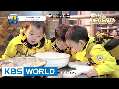 The Return of Superman - The Triplets Special Ep.12 [ENG/CHN/2017.07.28]