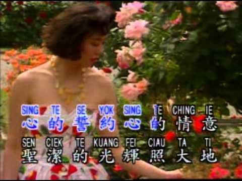 鑽石金曲 - 玫瑰玫瑰我愛你 KTV