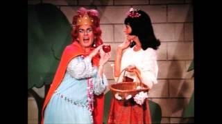 Snow White & the Seven Bradys