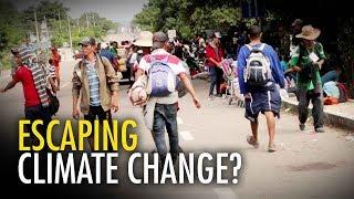 "UK Guardian blames caravan on ""climate change"" | David Menzies"