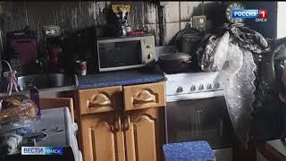 Омские пожарные спасли собаку, наглотавшуюся угарным газом
