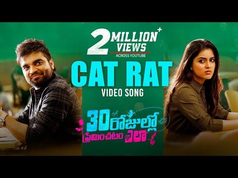 Cat body loki video song- 30 Rojullo Preminchadam Ela- Pradeep Machiraju, Amritha Aiyer