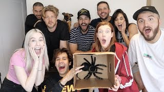 VLOG SQUAD PLAYS WHATS IN THE BOX CHALLENGE!!