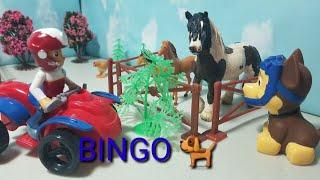 BINGO the Dog Song! Bingo the Dog!   Nursery rhymes! #bingothedog #nurseryrhymes #forkids