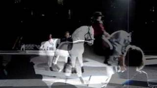 Lipizzaners- Zebra, This Town Needs Guns