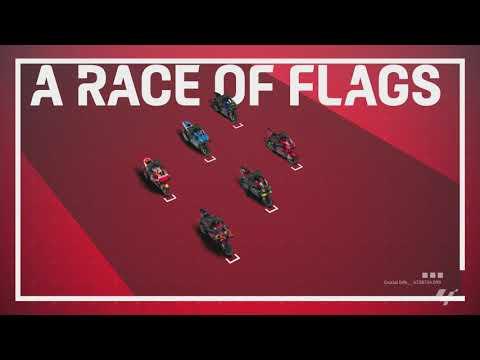 MotoGP™ in 3D: Flag meanings