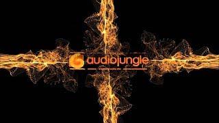 Music - Happy Optimistic Ukulele Indie Folk | AudioJungle Download