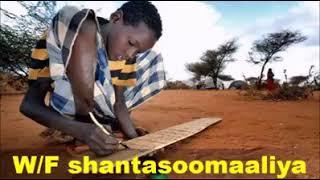 Heart Touching Quran Recitation Somali shiekh
