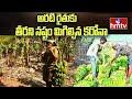 అరటి రైతుకు తీరని నష్టం మిగిల్చిన కరోనా | Corona Effect On Banana Farmer | hmtv News