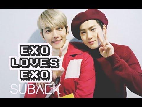 EXO LOVES EXO: SuBaek
