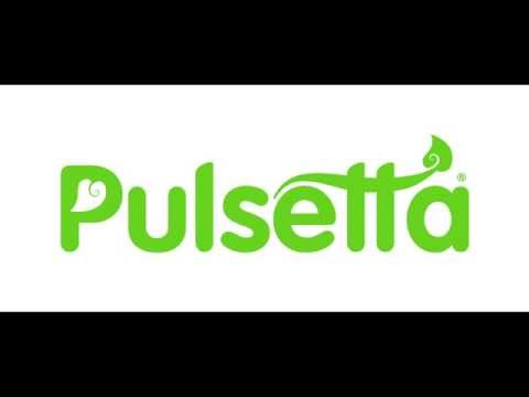 Pulsetta Logo Animation