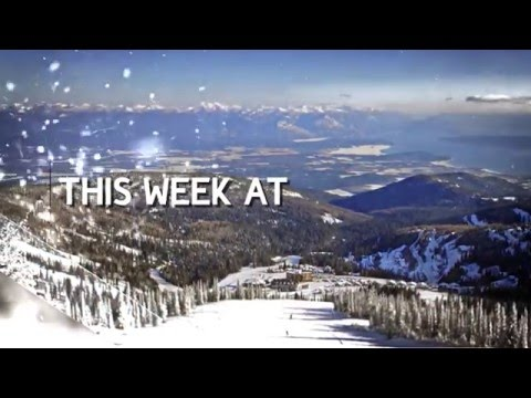 This Week at Schweitzer February 9th 2016