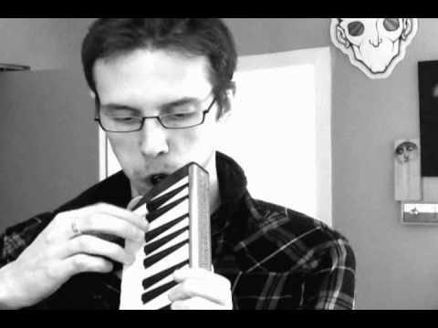 Hammond 44 HP Suzuki Melodion Melodica review